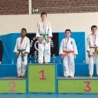 Championnats départementaux benjamins 2015 (8)